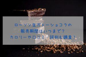 ローソン生ガトーショコラの 販売期間はいつまで? カロリーや口コミ・評判も調査!イメージ画像
